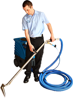 Carpet Cleaners Adelaide - Steam Cleaning Services